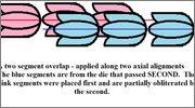 Cantos de los reales de a 8 tipo columnario. 942288_10207968495823718_7463732229198235762_n