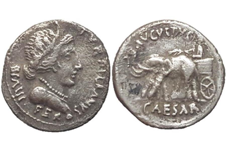 Denario de Augusto. AVGVSTVS CAESAR. Emperador en biga de elefantes a izq. Roma.  - Página 2 Ff5_Wk3g_NPc6bq_Jo4wn8_LSzd97_RKe_G2
