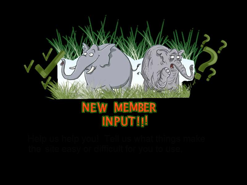 New member input NM_input