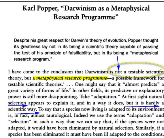 Evolution n'a rien de scientifique Poper_karl