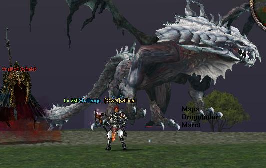 Metin2 NewChallenge    PvM-PvP Mapa_dragonului_maret
