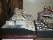 VII Межрегиональная выставка стендового моделизма, исторической и игровой миниатюры  P1110045