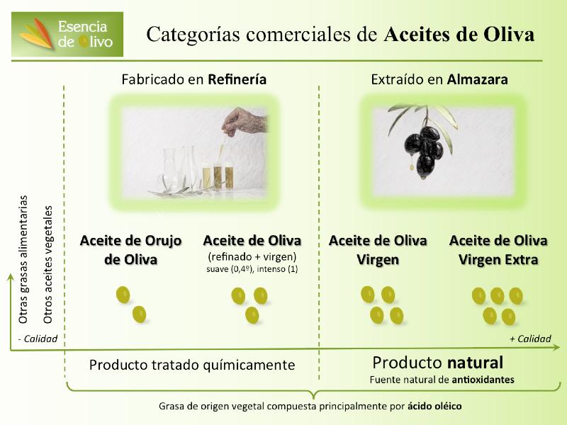 Categorías comerciales de aceite de oliva Categorias_aceites