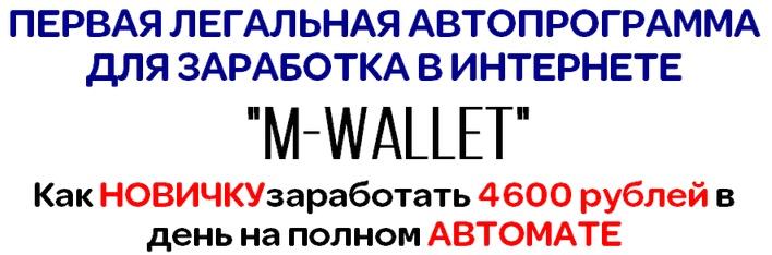 M-Wallet v 2.01 - программа  Nw2JT