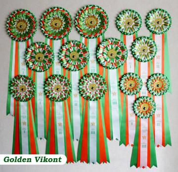 Наградные розетки на заказ от Golden Vikont - Страница 7 4DGan