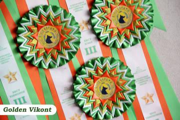 Наградные розетки на заказ от Golden Vikont - Страница 7 GV0SG