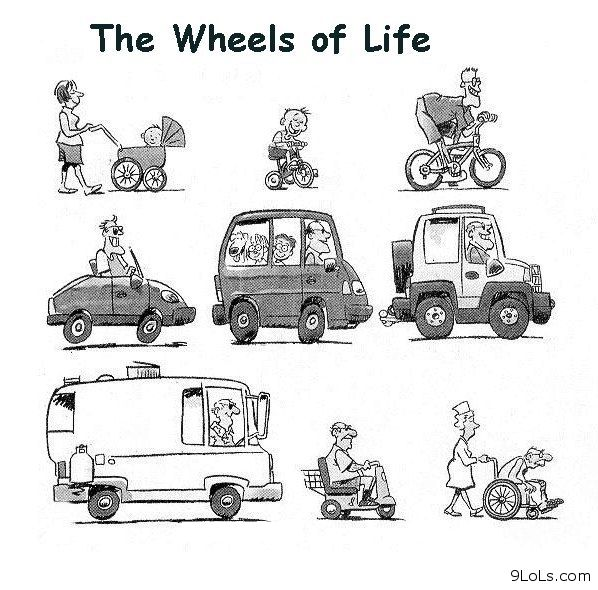 The cartoon thread. Funny-pics-funny-quotes-funny-easter-derp-and-derpina-funny-cartoons-Favim.com-675230