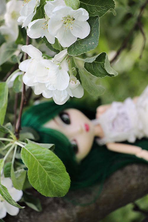 PULLIP Haute in New York (LE) — декабрь 2007 - Страница 2 D51004f320d157a10a71476c1df9ae6a