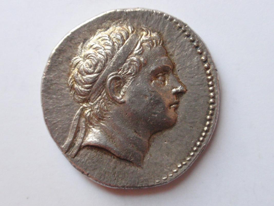 Tetradracma de Antioco III. ANTIOXOY ΒΑΣΙΛΕΩΣ (Ben Yusuf dedit) Antigono_III_001