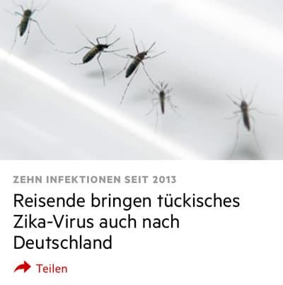Viren Zika_004