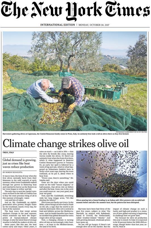 Cambio climático y olivar - Página 2 Nytimes