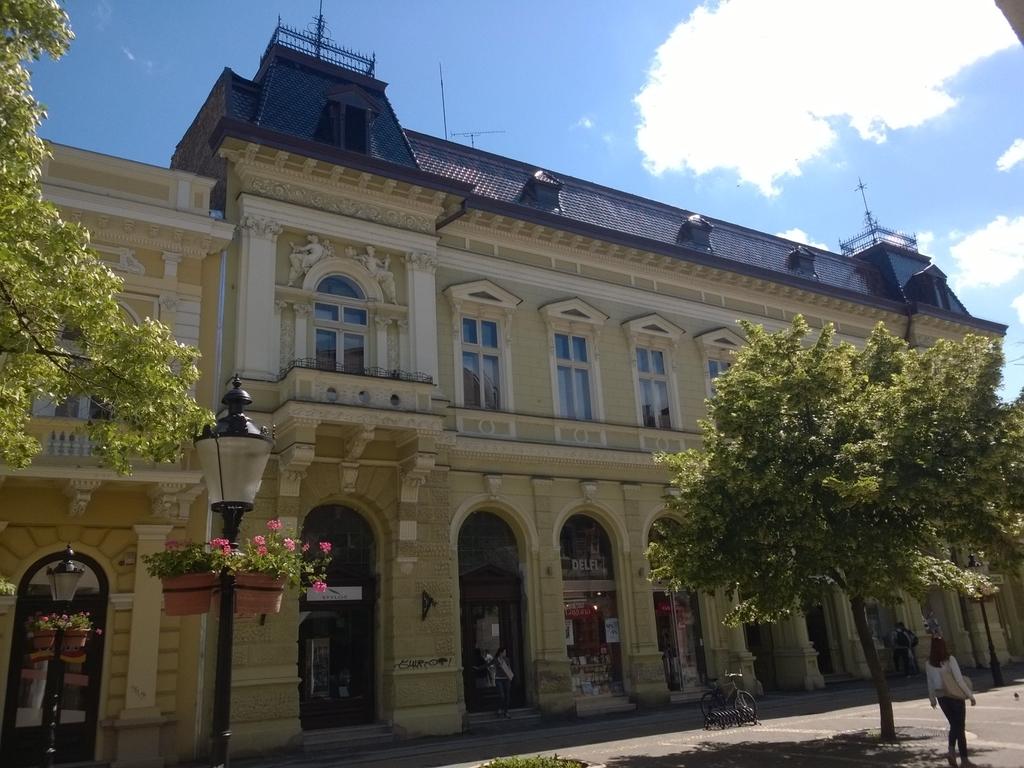 Grad Subotica - Page 4 WP_20150523_009
