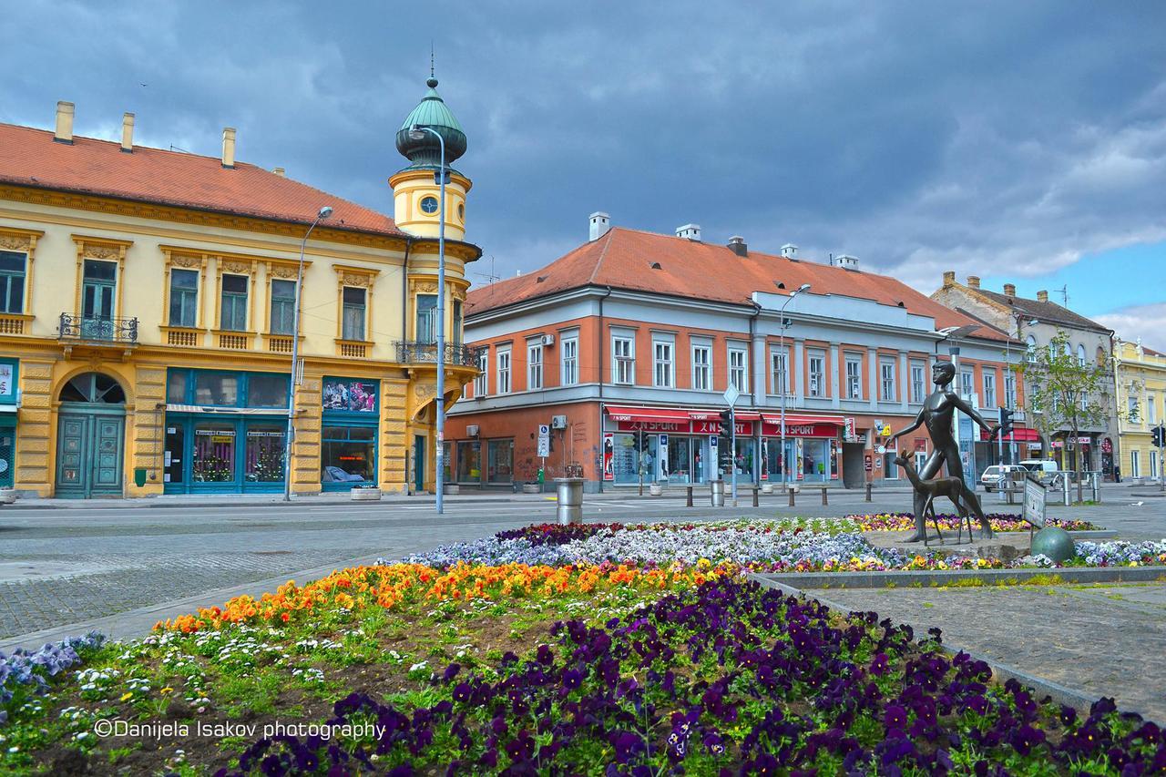 Grad Pancevo 11163106_834808943239940_4964123947097883356_o