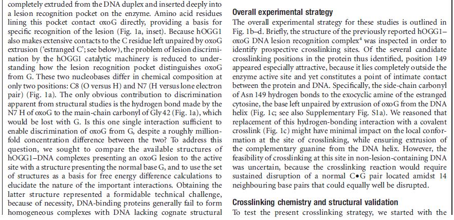 DNA and RNA error checking and  repair, amazing evidence of design DNA_repair_enzyme1