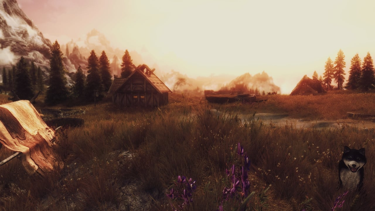 Random screenshots of random things Enb_2016_08_01_15_12_52_74