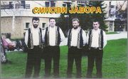Stevo Damljanovic - Diskografija  Image