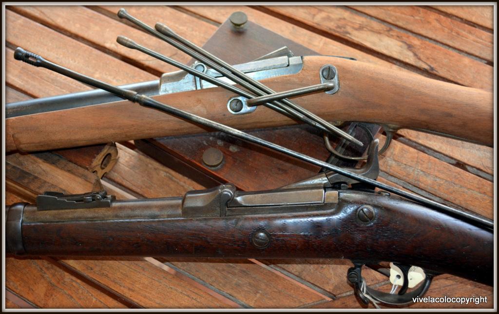 US Cavalry M1873 Trapdoor carbine DSC_0954