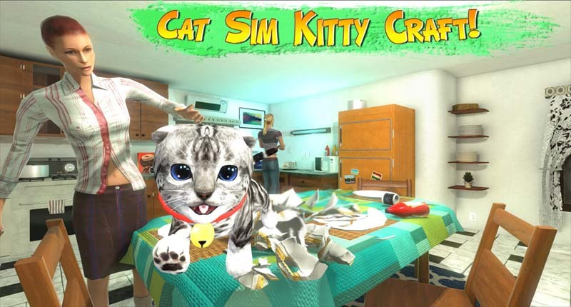 Cat Sim Kitty Craft Kit800