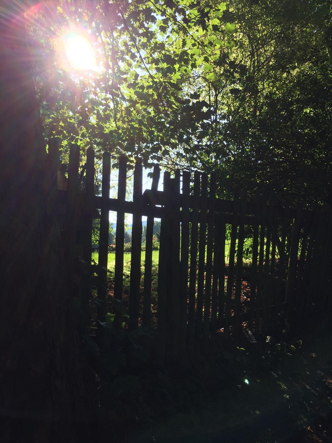 der Herbst steht vor der Tür IMG_0638