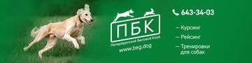 Курсинг в Санкт-Петербурге - Петербургский Беговой Клуб AcRMF