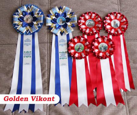 Наградные розетки на заказ от Golden Vikont - Страница 7 UZ6XS