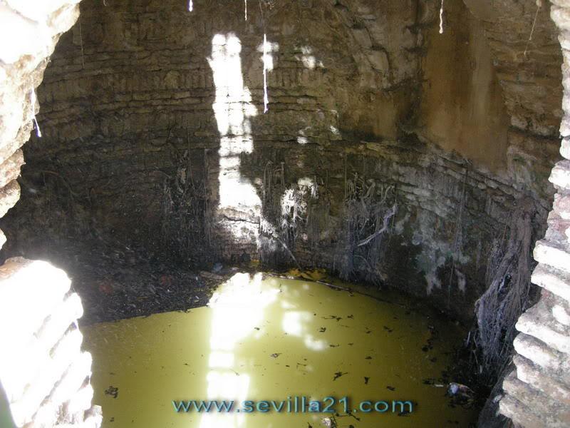 Parque de Miraflores (Sevilla). 20071115142330_DSCN7670_resize