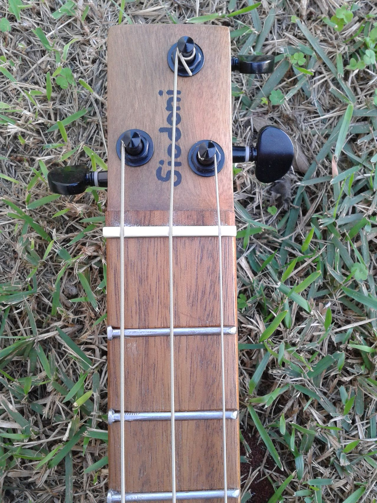 Siodoni - Cigar Box Guitar 2015_06_28_14_16_59