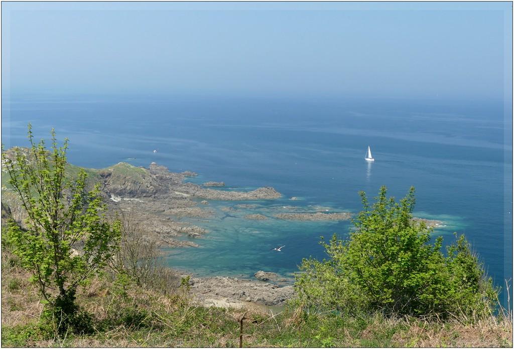 Brume..chaleur ..beaux rivages Bretons !! P1070541