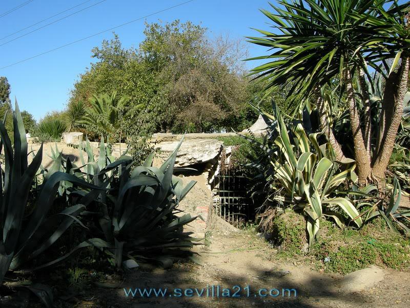 Parque de Miraflores (Sevilla). 20071115142256_DSCN7667_resize