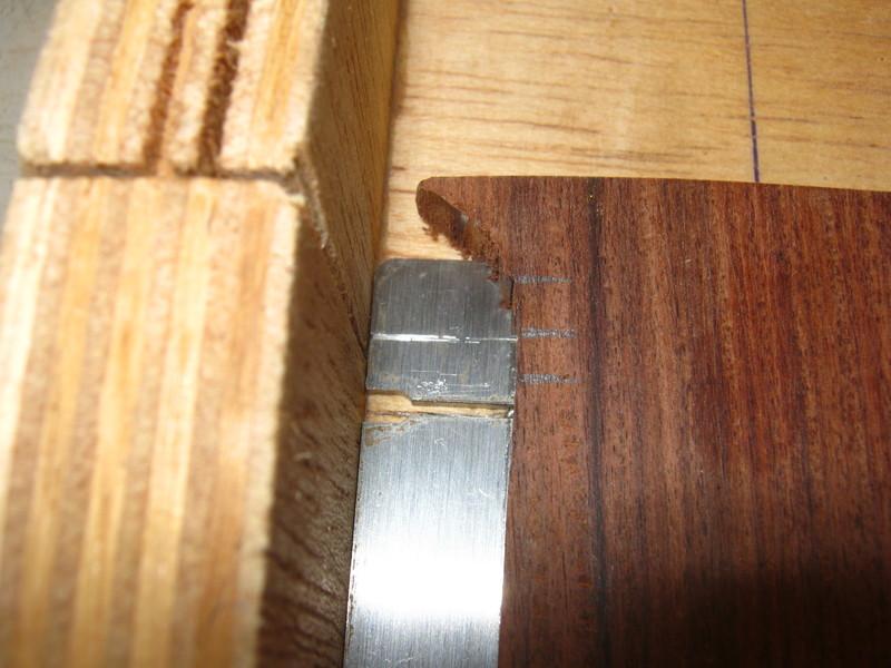 Precision Bass V IMG_2583