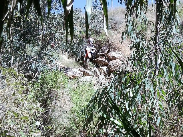 Verano fresquito Foto2682