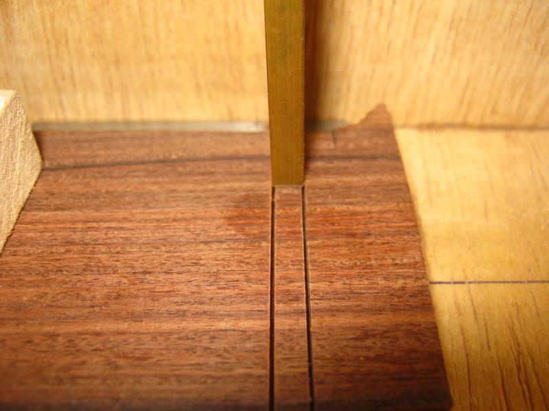 Precision Bass V IMG_2586