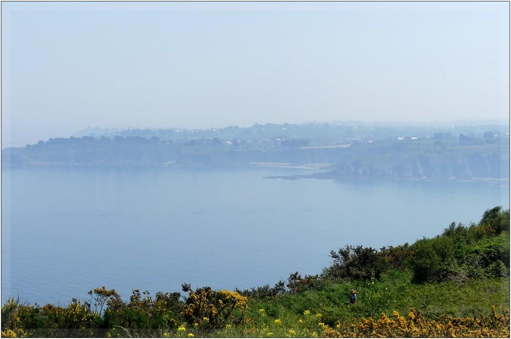Brume..chaleur ..beaux rivages Bretons !! P1070537
