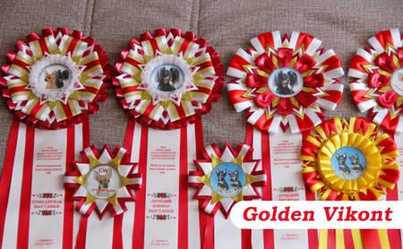 Наградные розетки на заказ от Golden Vikont - Страница 7 LIQgU