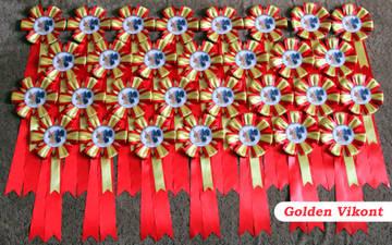Наградные розетки на заказ от Golden Vikont - Страница 7 DPVOF