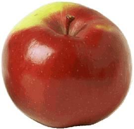 البنات تفاحات T06