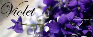 10 loại hoa mang may mắn cho tết Nhâm Thìn Hoa_violet