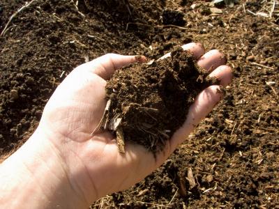 Các thành phần của đất – Giúp bạn cải tạo đất xấu thành đất tốt Khong-khi-trong-dat-trong