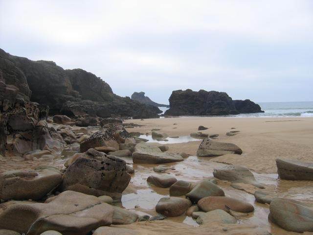 Côte de granite rose - Bretagne nord IMG_3121