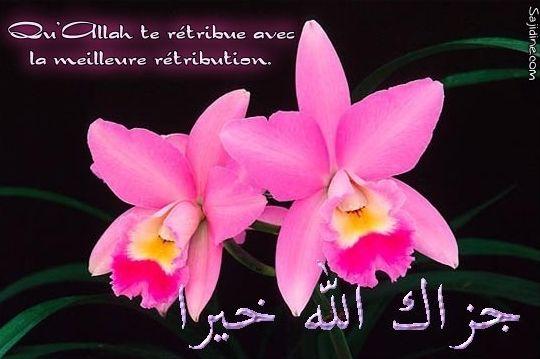 روعة الخط العربي Merci2