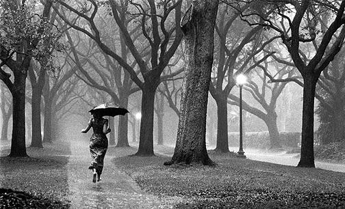 Izrazite svoja osecanja slikom - Page 2 Rain