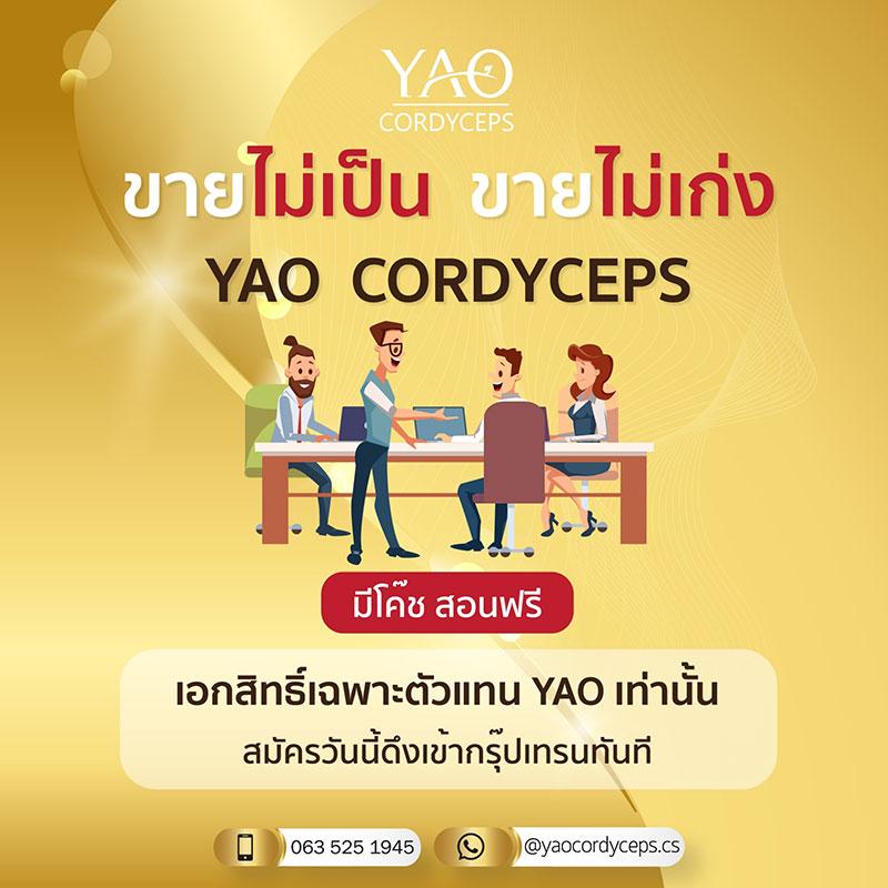 ถั่งเช่า YAO Cordyceps รับสมัครตัวแทนจำหน่าย ไม่สต๊อกสินค้า เสริมภูมิต้านทาน สร้างรายได้ กำไรสูง F87ad52aae888069b56ecb329ed94301