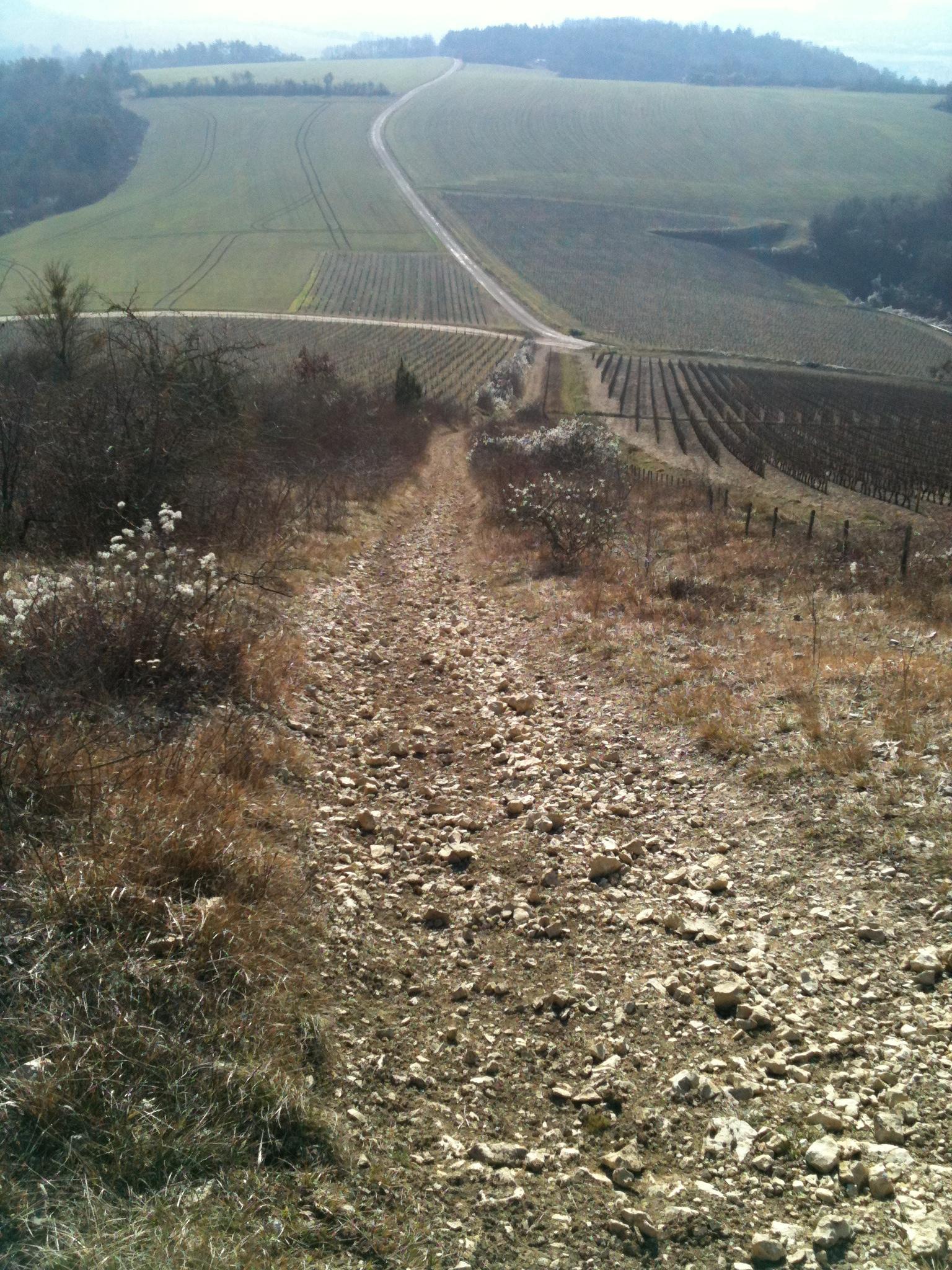 GR 13 Morvan Février 2011 Img_4220