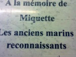 image du 16 11 2017 Toulon-hommage-a-miquette-la-reine-de-la-quequette-8025486