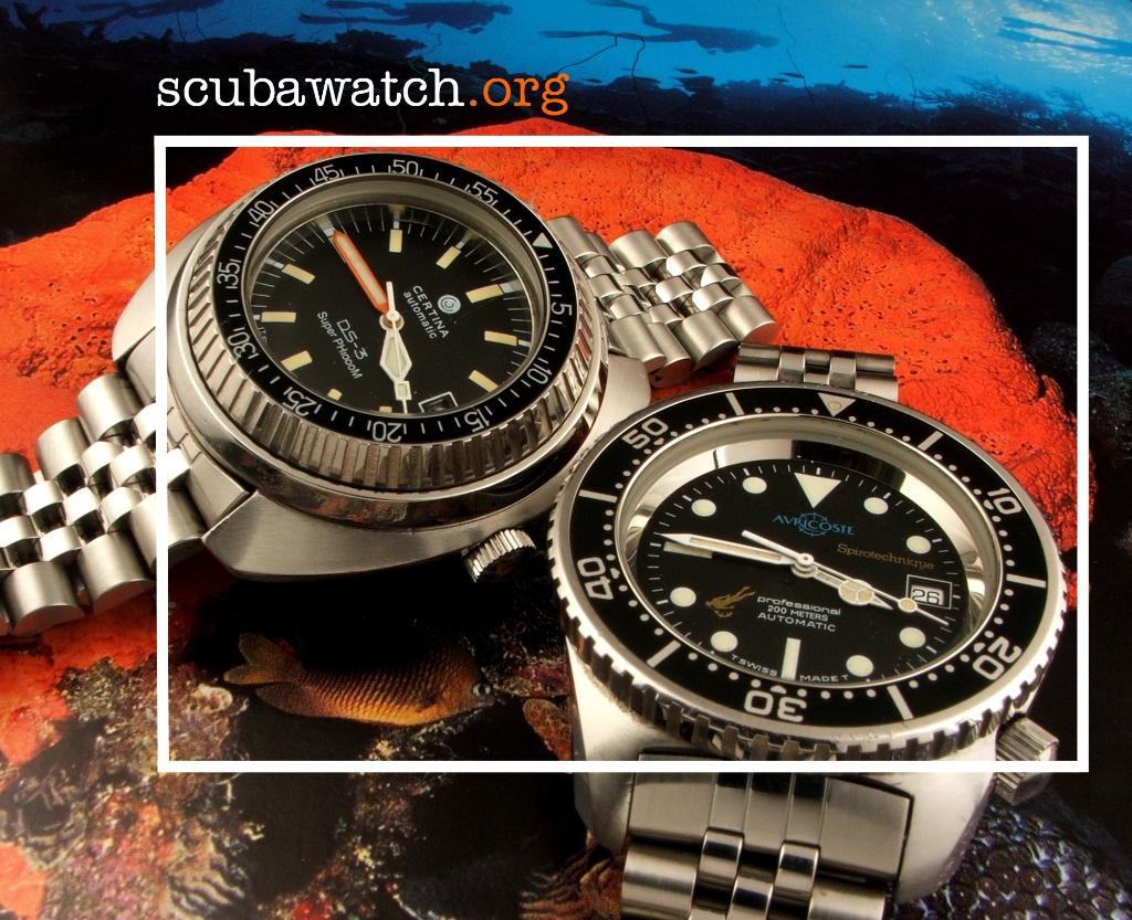 scubawatch.org 468_302-1024x833