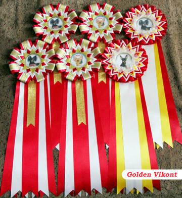 Наградные розетки на заказ от Golden Vikont - Страница 7 718dr