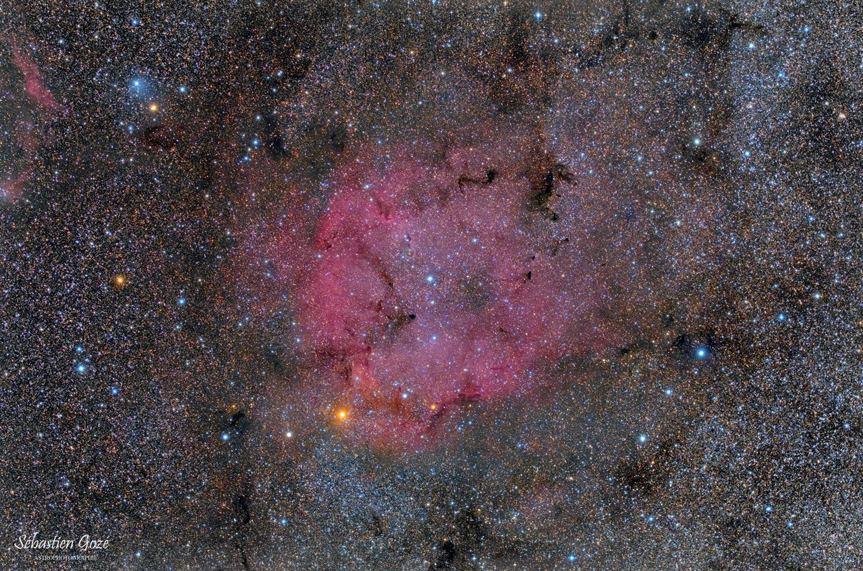 IC1396 - La nébuleuse de la trompe d'éléphant IC1396_finale%20red