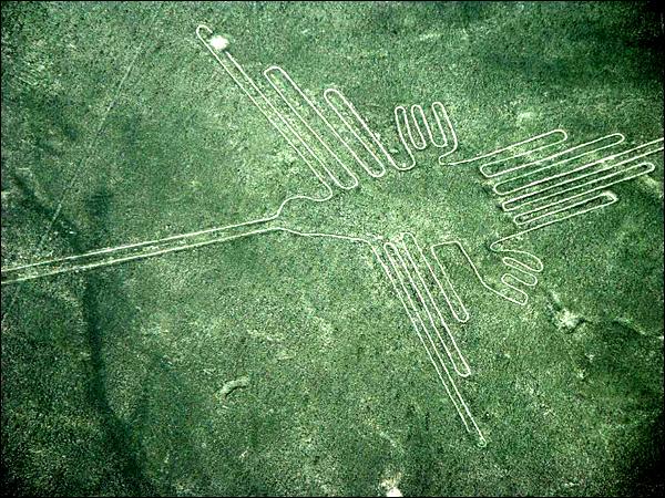 Les lignes nazca  Naz_oiseau01