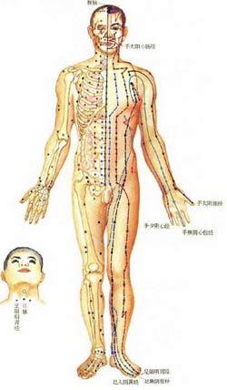 Akupunktura Zhenjiao