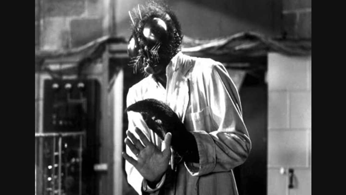 El proceso del HOMBRE, que se quedó encerrado en su subconsciente. The-Fly-1958